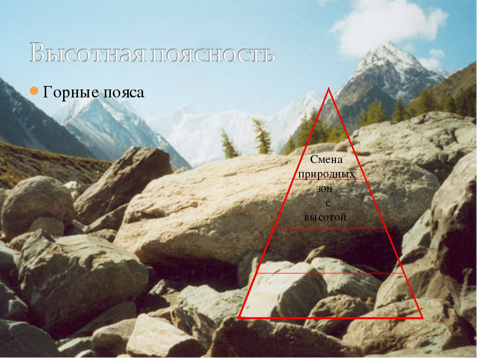Горные пояса Смена природных зон с высотой
