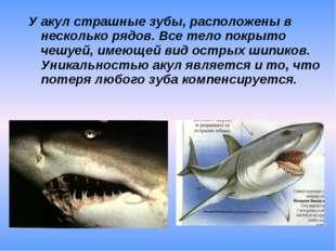 У акул страшные зубы, расположены в несколько рядов. Все тело покрыто чешуей