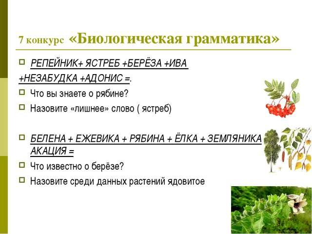 7 конкурс «Биологическая грамматика» РЕПЕЙНИК+ ЯСТРЕБ +БЕРЁЗА +ИВА +НЕЗАБУДКА...