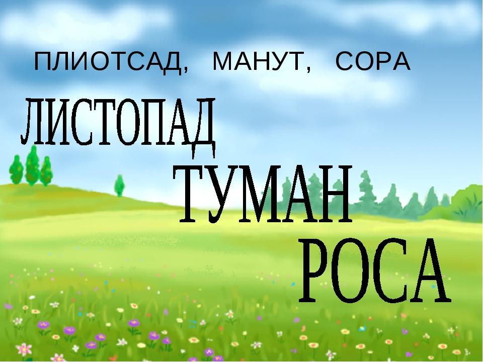 ПЛИОТСАД, МАНУТ, СОРА