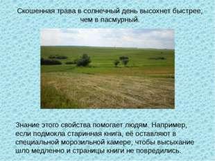 Скошенная трава в солнечный день высохнет быстрее, чем в пасмурный. Знание эт