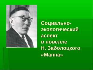 Социально-экологический аспект в новелле Н. Заболоцкого «Маппа»