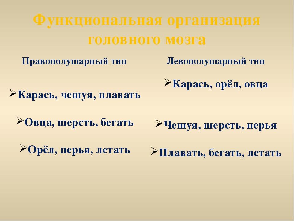 Функциональная организация головного мозга Правополушарный тип Карась, чешуя,...