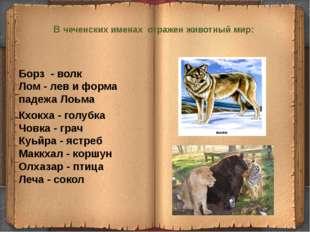 В чеченских именах отражен животный мир:  Борз - волк Лом- лев и форма