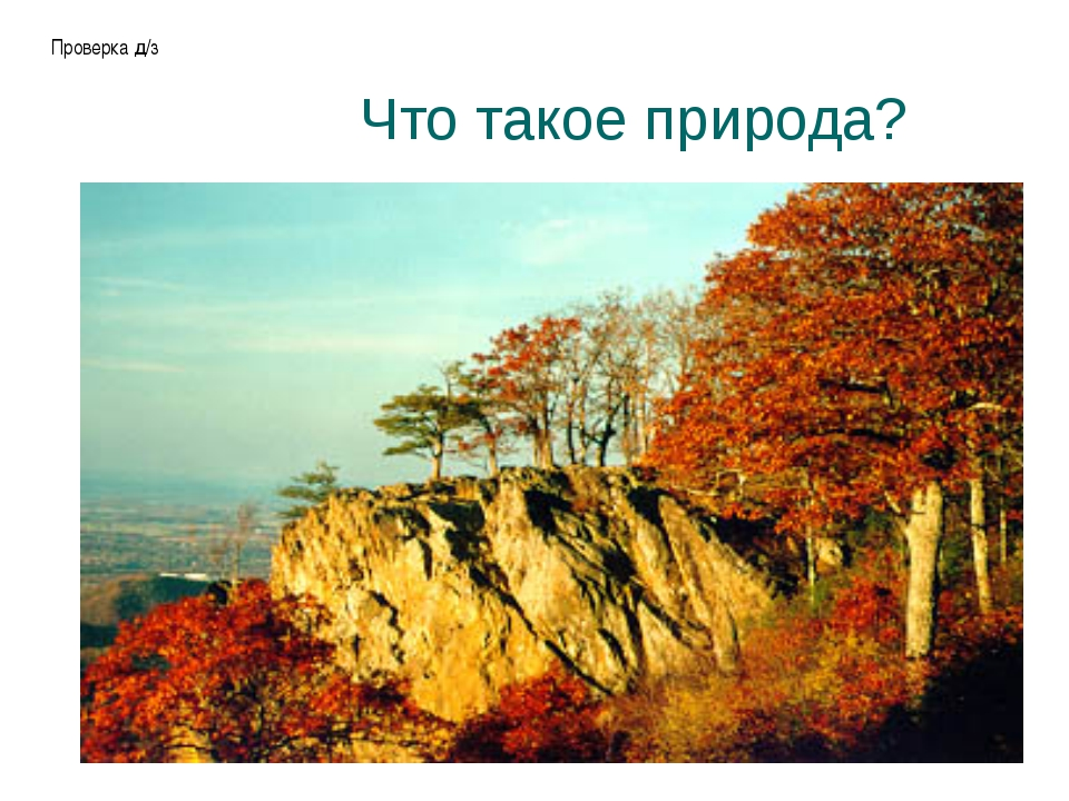 Что такое природа? Проверка д/з