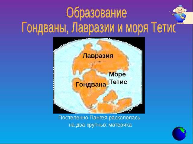 Постепенно Пангея раскололась на два крупных материка Лавразия Море Тетис Гон...