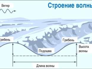 Строение волны Гребень Подошва Длина волны Высота волны Гребень Ветер