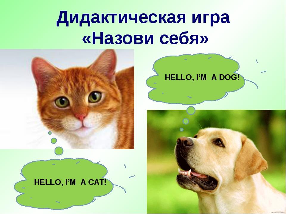 Дидактическая игра «Назови себя» HELLO, I'M A DOG! HELLO, I'M A CAT!