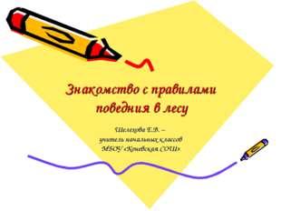 Знакомство с правилами поведния в лесу Шелехова Е.В. – учитель начальных клас
