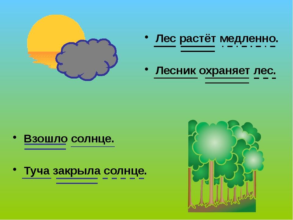 Взошло солнце. Туча закрыла солнце. Лес растёт медленно. Лесник охраняет лес....