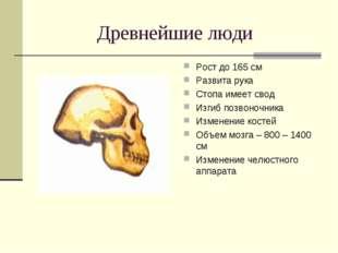Древнейшие люди Рост до 165 см Развита рука Стопа имеет свод Изгиб позвоночни