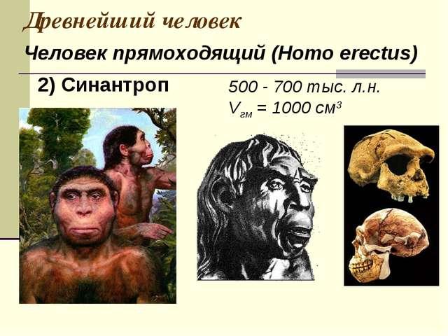 Древнейший человек 500 - 700 тыс. л.н. Vгм = 1000 см3 Человек прямоходящий (H...