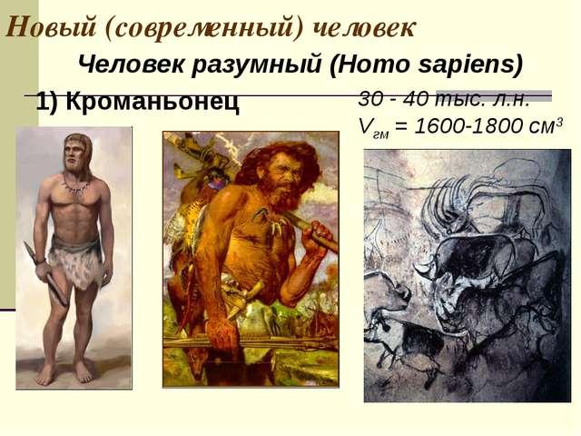 Новый (современный) человек 30 - 40 тыс. л.н. Vгм = 1600-1800 см3 1) Кроманьо...