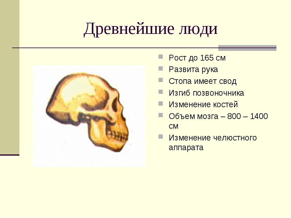Древнейшие люди Рост до 165 см Развита рука Стопа имеет свод Изгиб позвоночни...