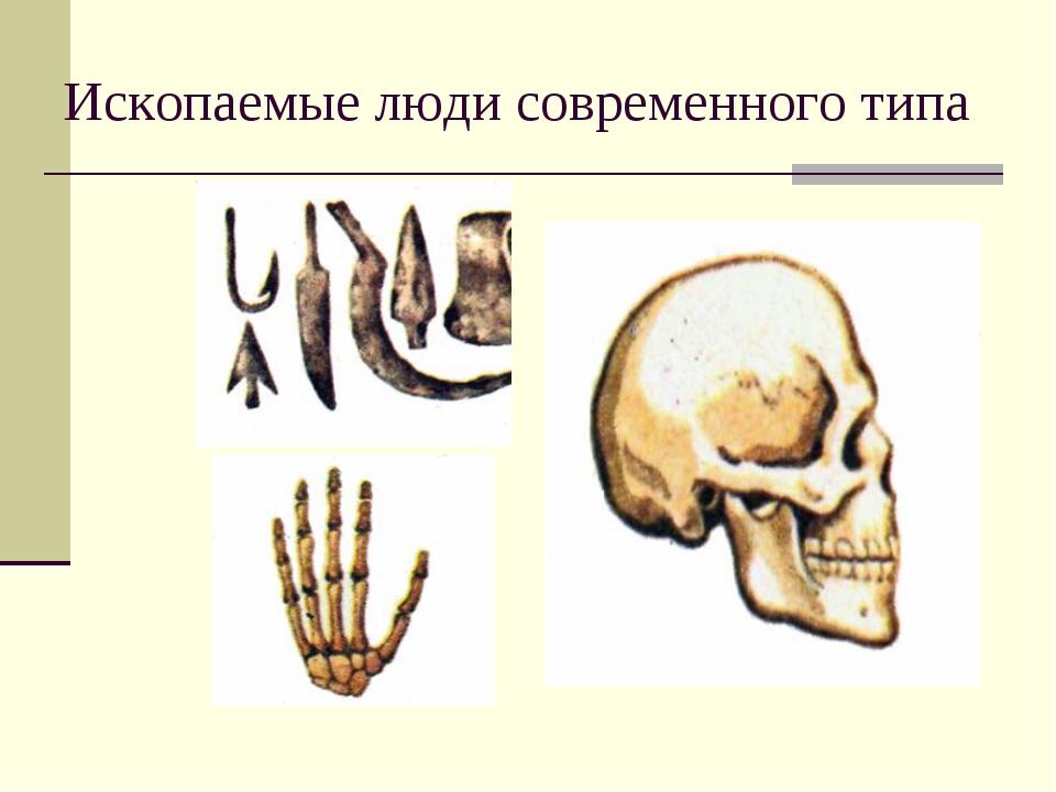 Ископаемые люди современного типа