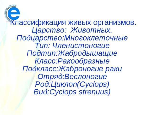 Классификация живых организмов. Царство: Животных. Подцарство:Многоклеточные...