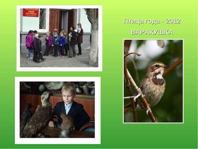 Птица года - 2012 ВАРАКУШКА