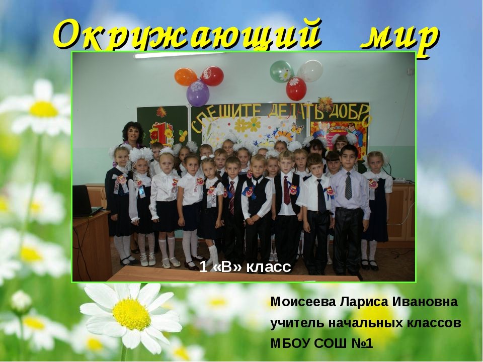 Окружающий мир Моисеева Лариса Ивановна учитель начальных классов МБОУ СОШ №...