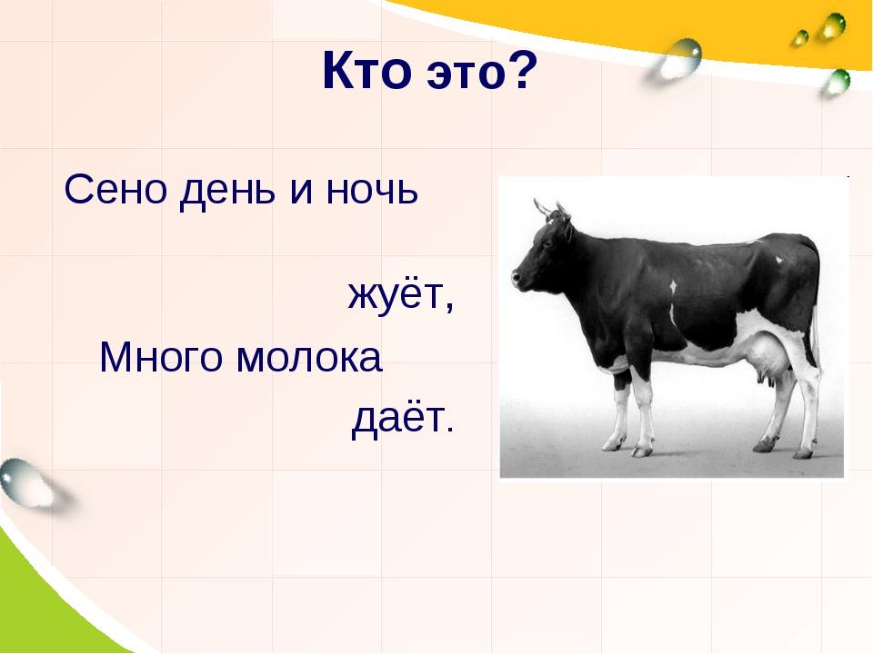 Кто это? Сено день и ночь жуёт, Много молока даёт.