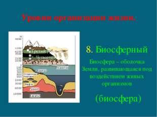Уровни организации жизни. 8. Биосферный Биосфера – оболочка Земли, развивающа