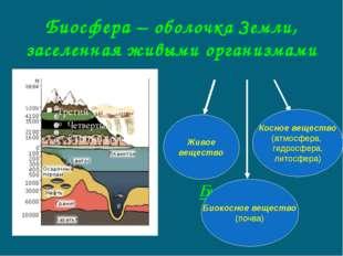 Биосфера – оболочка Земли, заселенная живыми организмами Биосфера Живое вещес