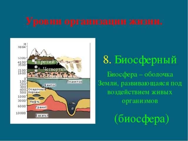 Уровни организации жизни. 8. Биосферный Биосфера – оболочка Земли, развивающа...