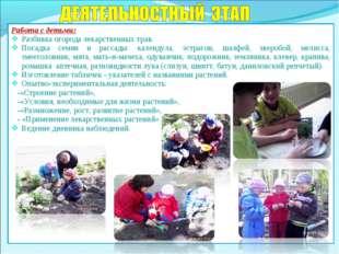 Работа с детьми: Разбивка огорода лекарственных трав. Посадка семян и рассады