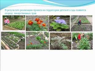 В результате реализации проекта на территории детского сада появится огород л