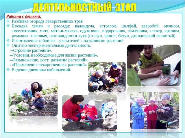 Работа с детьми: Разбивка огорода лекарственных трав. Посадка семян и рассады...