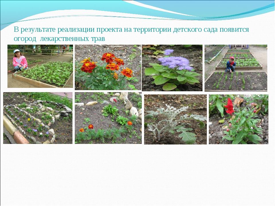 В результате реализации проекта на территории детского сада появится огород л...