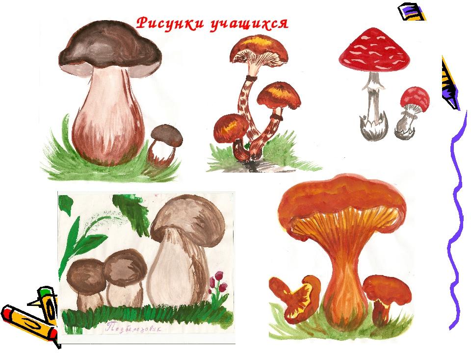 Рисунки учащихся
