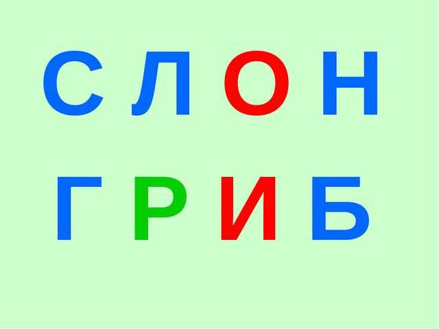 С Л О Н Г Р И Б