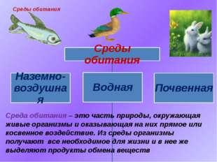 Среда обитания – это часть природы, окружающая живые организмы и оказывающая