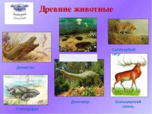 Древние животные Стегоцефал Трилобит Динихтис Динозавр Саблезубый тигр Больше