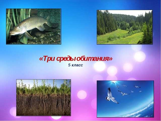 «Три среды обитания» 5 класс