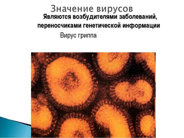 Являются возбудителями заболеваний, переносчиками генетической информации Ви...