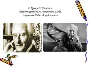 Ф.Крик и Д Уотсон – первооткрыватели структуры ДНК лауреаты Нобелевской премии