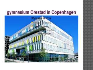 gymnasium Orestad in Copenhagen