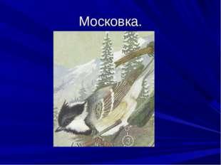 Московка.
