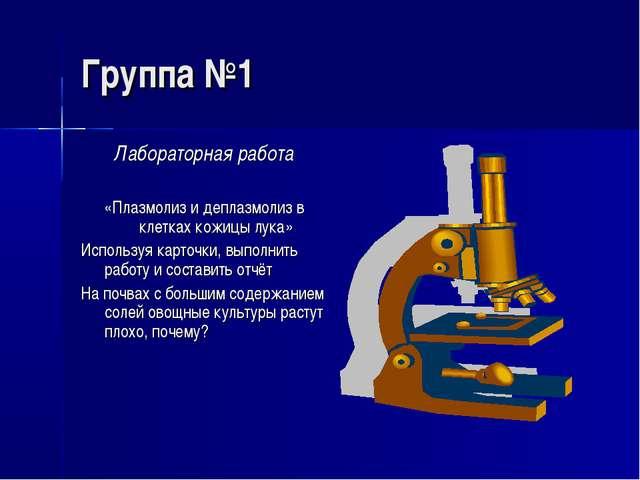 Группа №1 Лабораторная работа «Плазмолиз и деплазмолиз в клетках кожицы лука»...