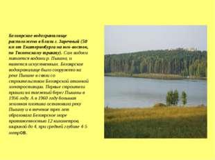 Белоярское водохранилище расположено в близи г. Заречный (50 км от Екатеринб