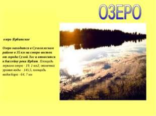 озеро Ирбитское Озеро находится в Сухоложском районе в 35 км на северо-восто