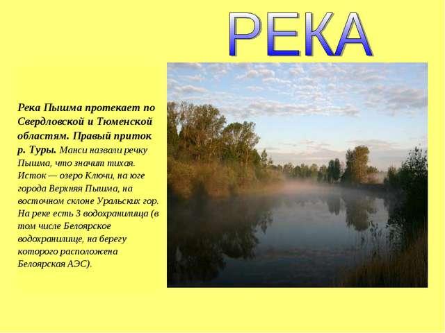 Река Пышма протекает по Свердловской и Тюменской областям. Правый приток р....