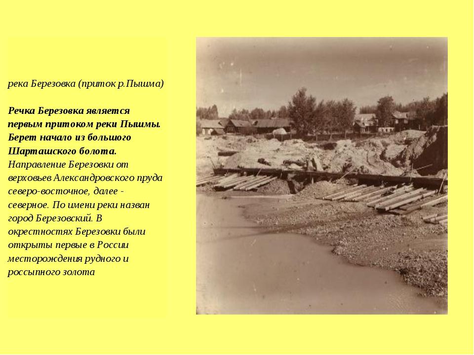 река Березовка (приток р.Пышма) Речка Березовка является первым притоком реки...