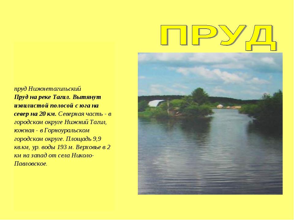 пруд Нижнетагильский Пруд на реке Тагил. Вытянут извилистой полосой с юга на...