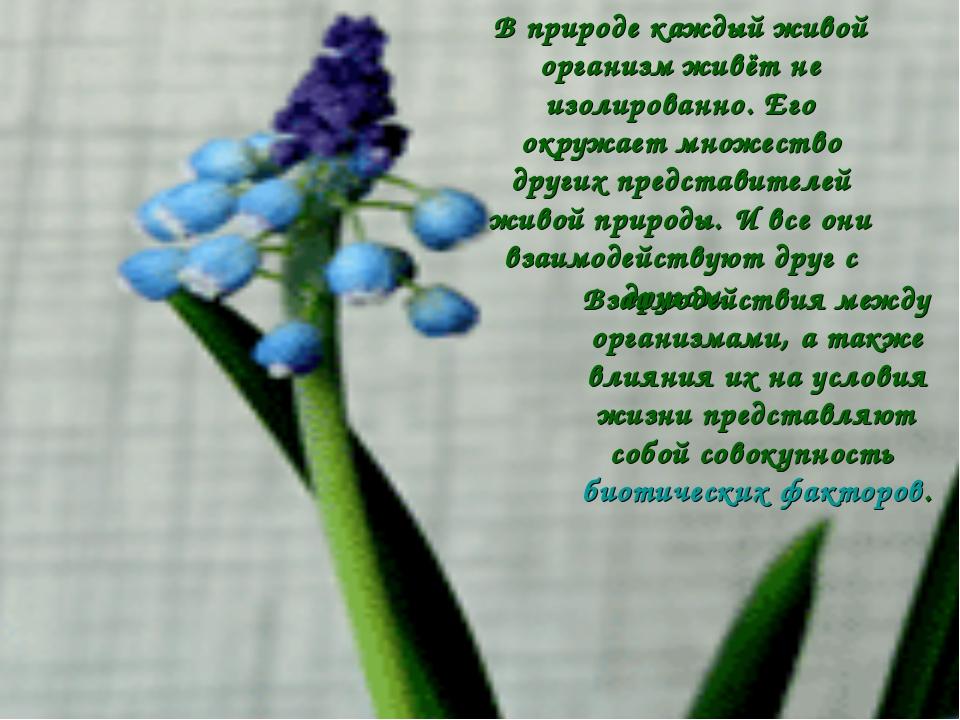 В природе каждый живой организм живёт не изолированно. Его окружает множество...