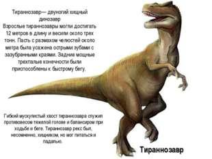 Тираннозавр— двуногий хищный динозавр Взрослые тираннозавры могли достигать 1