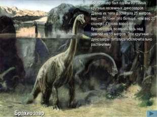 Брахиозавр был одним из самых крупных наземных динозавров. Длина их тела дост