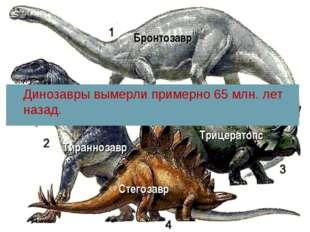 Стегозавр Трицератопс Тираннозавр Динозавры вымерли примерно 65 млн. лет наза