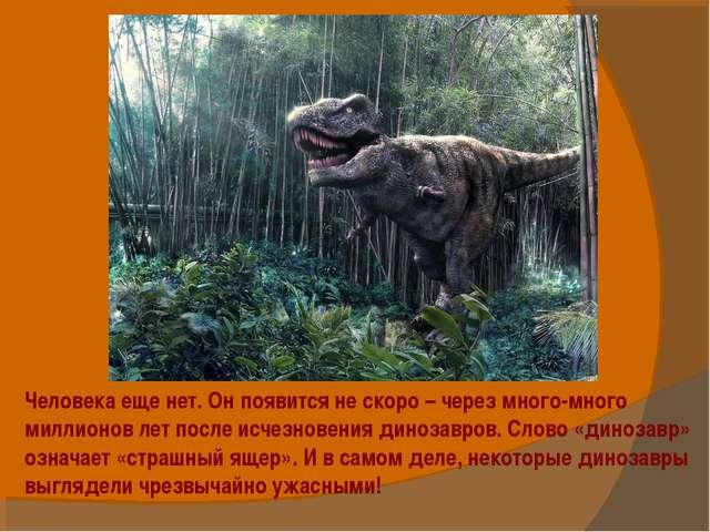 Человека еще нет. Он появится не скоро – через много-много миллионов лет посл...